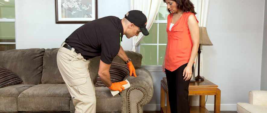 Miami Lakes, FL carpet upholstery cleaning